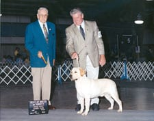 Best of Breed,Space Coast Kennel Club