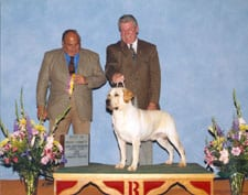 Best of Breed, Greater Hattiesburg Kennel Club