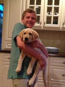 A yellow Labrador carried by a boy