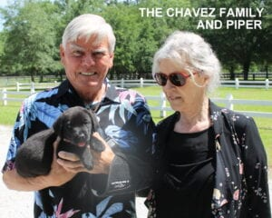The Chavez family and Piper