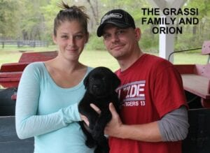 The Grassi family and Orion