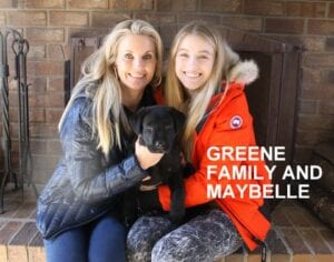 The The Greene family and Maybelle