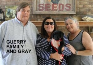 The Guerry family and Gray