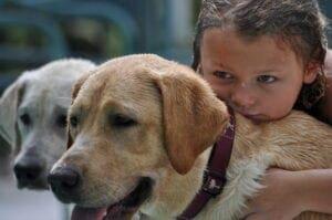 A toddler standing near a dog